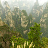 Tianji_2011 12_4492148