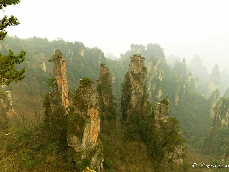 Tianji_2011 12_4492081