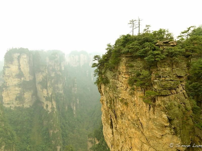 Tianji_2011 12_4492144