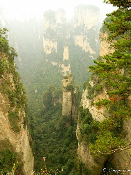 Tianji_2011 12_4492132