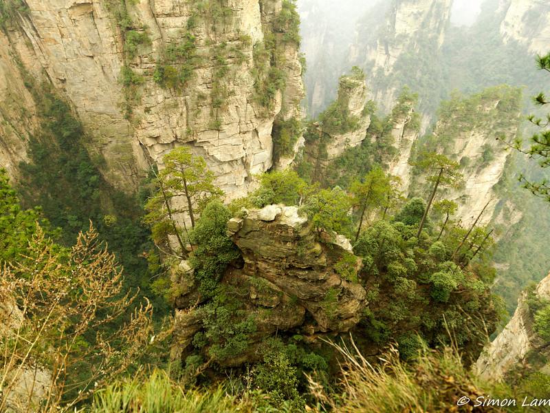 Tianji_2011 12_4492120
