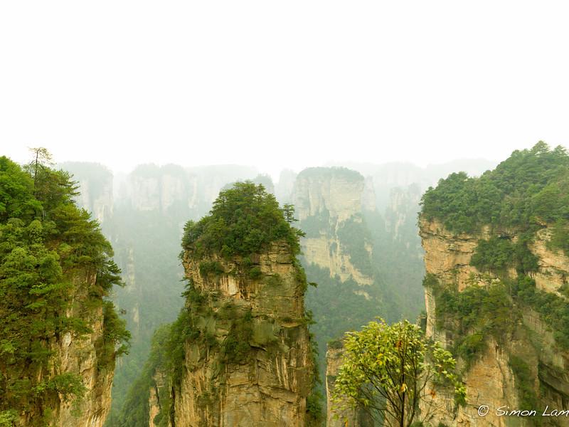 Tianji_2011 12_4492141