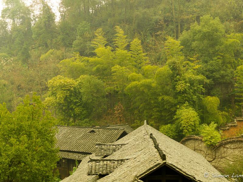 Zhangjiajie_2011 12_4492256