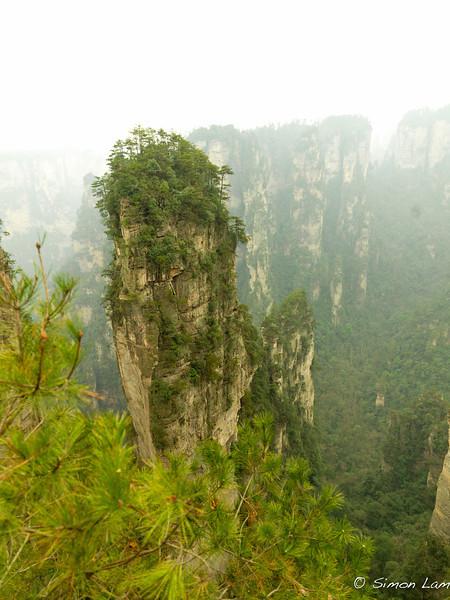 Tianji_2011 12_4492126