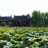 Daguanyuan_2011 10_4491450
