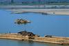 Radeaux de bambous sur la rivière Chindwin au niveau de Mawlaik. Région de Sagaing/Birmanie (Myanmar)