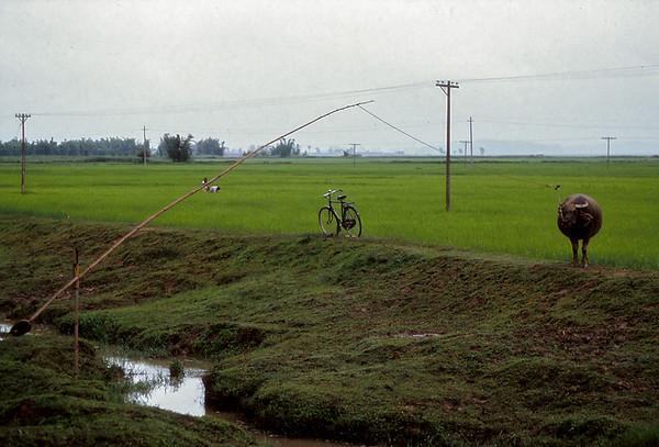 Région de Mengzhe - Frontière Laos-Birmanie -