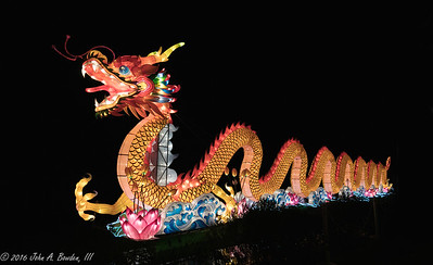 Chinese Lantern Festival 12-21-16