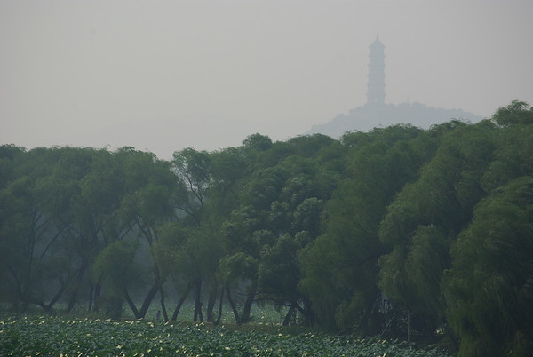 Widocznosc jak to w Pekinie do dupy - poprostu jest zawilgotno