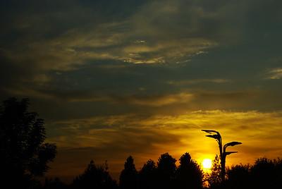 Zachód słońca w parku olimpijskim