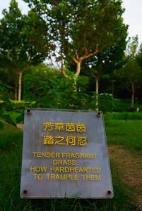 Ten to napis można zrozumieć tylko po usmiechnietej trawie