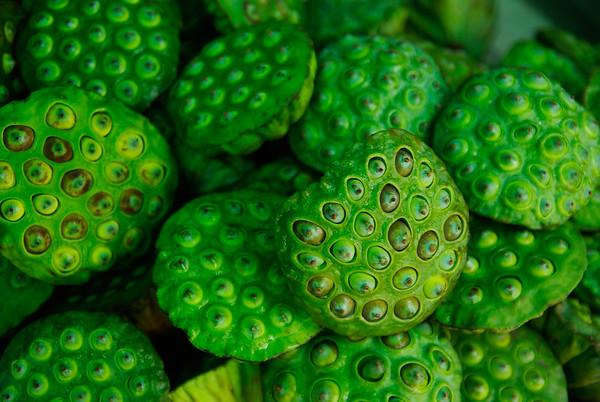 Owoce lotosu - pani chciała nam sprzedać,ąle nie wiedzieliśmy jak to zjeść? Teraz już wiemy - trzeba wydłubać pestki, bo one są jadalne. Spróbujemy jak spotkamy następnym razem
