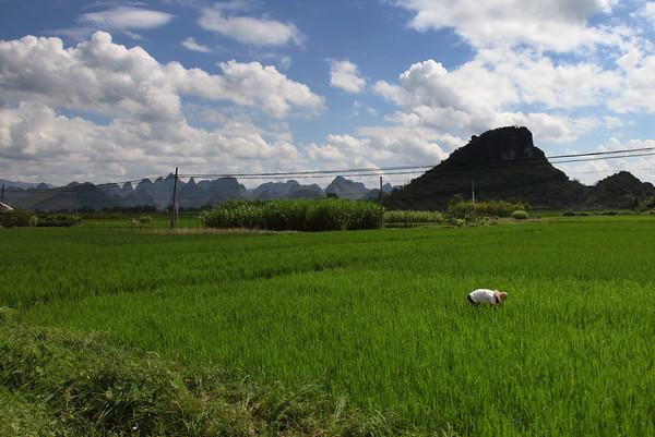 W drodze do Xingping