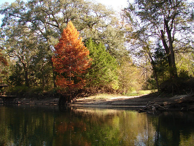 Chipola River 2005