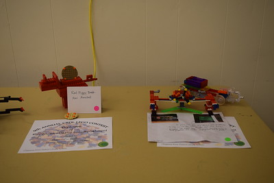 Susan Field-Morning Sun Veterans Memorial Library in Mt. Pleasant hosts ninth annual Lego contest.