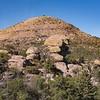 Sugarloaf Mountain (elevation 7,310')