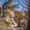 On the Echo Canyon Trail