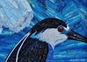 Black-Crowned Night Heron  -- inspired by a photo by Gordon Henry