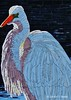 Great Egret -- inspired by a photo by Neal Socha