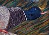 Mallard -- inspired by a photo by Ralph Lauer