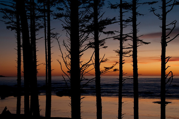 Olympic National Park, Ruby Beach, Sunset, Washington