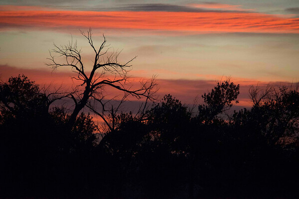 Sunset, Bosque del Apache, New Mexico
