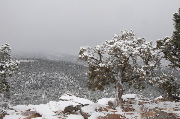 Winter, Santa Fe, New Mexico