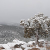 Winter, Santa Fe, New Mexico
