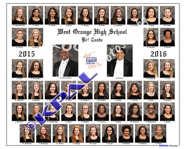 Bel Canto Composite 2016