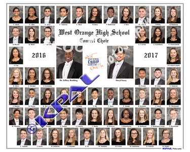 Concert Choir Composite 2017