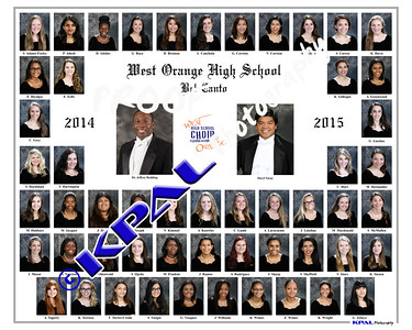 Bel Canto Composite 2015