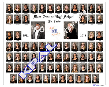 Bel Canto Composite 2013