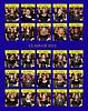 aa-Seniors 2012 Playbill