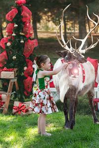 Christmas Photo (4)