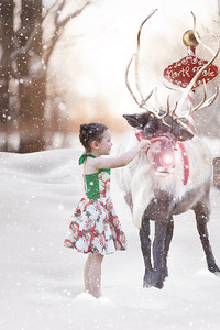 Christmas Photo (5)