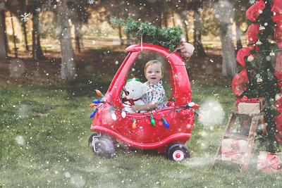 Christmas Photo (2)