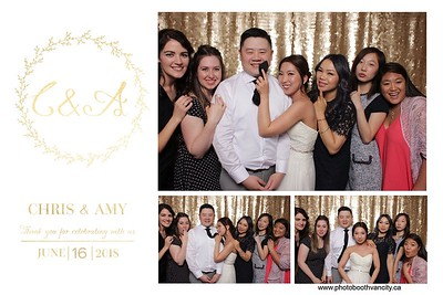 Chris & Amy's Wedding Reception