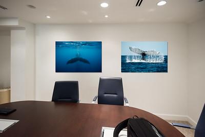 BoardroomMockup2Horiz09