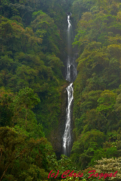Unnamed Ecuadorian Waterfall