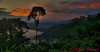 Sunset at Wild Sumaco Lodge in Ecuador