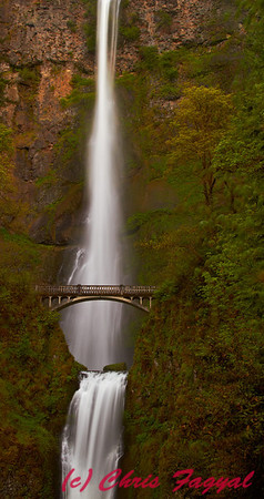 Multnomah Falls near sunset