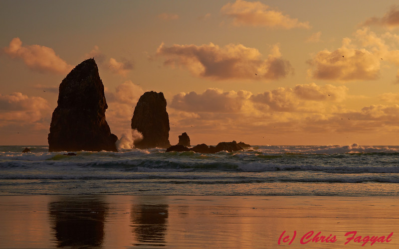 Cannon Beach Seascape near sunset