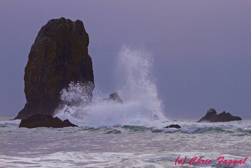 Cannon Beach Needles with waves crashing against them