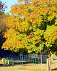 Rockland Park Hendersonville TN 2008