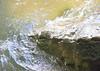Defeated Creek TN 05/24/09