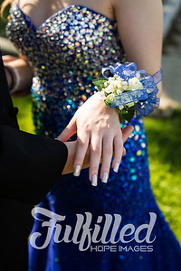 Chris and Emily Prom 2016 (32)