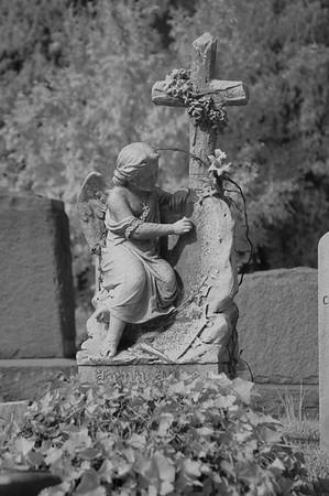 Elmwood Cemetery 005