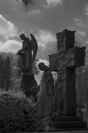 Elmwood Cemetery 031