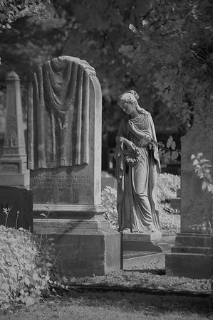 Elmwood Cemetery 152