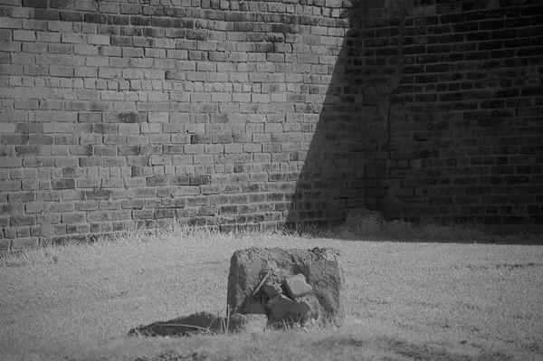 Elmwood Cemetery 120